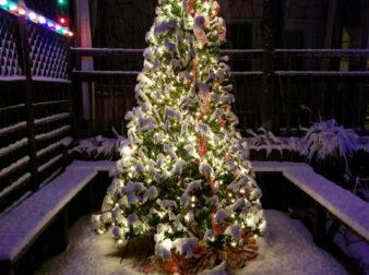 Christmas tree with lights and snowfall 2017